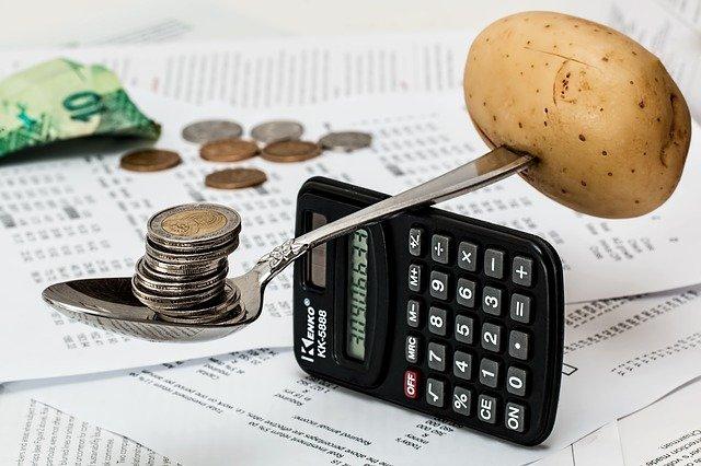 program do budżetu domowego